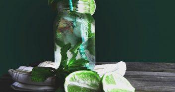 The Mojito Crisp and Refreshing